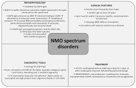 ijms free full text the immunology of neuromyelitis optica