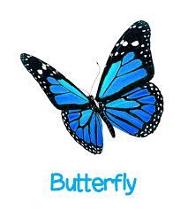 bumpkins day nursery introducing our butterfly room bumpkins