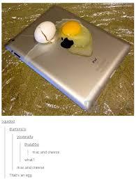 Egg Meme - egg tumblr know your meme