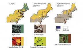 Map Of Northeast United States by Climate Impacts In The Northeast Climate Change Impacts Us Epa