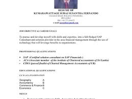 28 cover letter for sap abap consultant cover letter sap