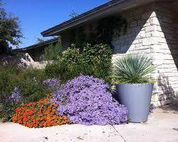 Fall Garden Plants Texas - 214 best garden texas gardening images on pinterest texas