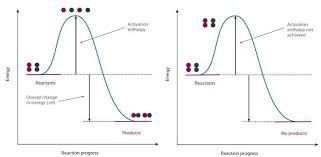 rates of reactions cpd education in chemistry