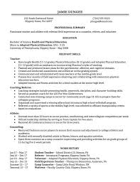 Two Years Experience Resume Resume Writing Employment History Full Page