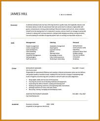 Manager Of Operations Resume Director Of Operations Resume Sample It Director Resume