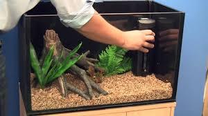 Beautiful Home Fish Tanks by Setting Up A Goldfish Aquarium Youtube