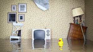 why do i need renters insurance rent com blog