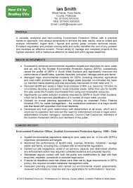 Profile On Resume What To Put In Profile On Resume Free Resume Example And Writing