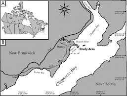 New Brunswick Canada Map Detailed by Significance Of Atlantic Sturgeon Feeding Excavations Mary U0027s