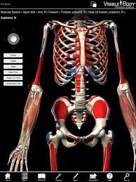 Anatomy And Physiology Apps 3d Muscular Premium Anatomy For Ipad Pushes Boundary For Anatomy Apps