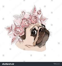 portrait pug dog rose flower head stock vector 642690385