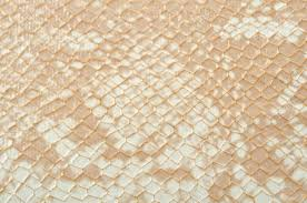 seamless texture background white snake skin stock photo picture