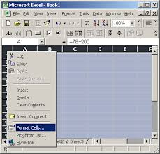 ms excel 2003 hide formulas from appearing in the edit bar