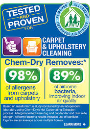 Carpet And Upholstery Shampoo Snyder U0027s Chem Dry Carpet U0026 Upholstery Cleaning Pet Odor Removal