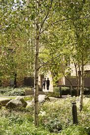 586 best landscapes images on pinterest landscape design urban