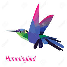 colorful hummingbird bird low poly design isolated on white