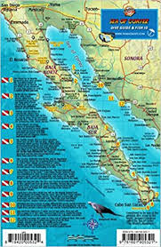 lbl map baja sea of cortez mexico dive map fish identification guide