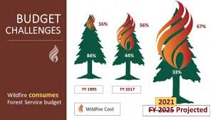 cost of fire operations us forest service