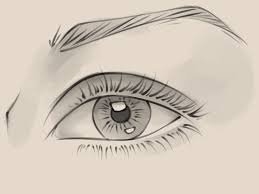 How To Pencil Eyebrows How To Draw A Realistic Female Eye 10 Steps With Pictures