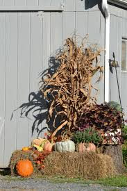 Fall Harvest Outdoor Decorating Ideas - 26 best barn dance images on pinterest marriage barn parties