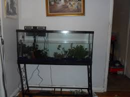 Custom Plans by Fish Tank Unbelievable Aquarium Standn Images Design For Tank