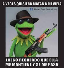 Rana Rene Memes - los mejores memes de la rana ren礬 para compartir en las redes