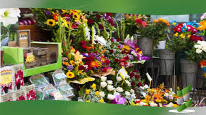 florist nc enlign business brokers enlign sells great blooms florist in