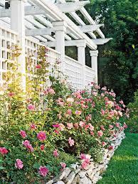 Fence Panels With Trellis Garden Design Garden Design With Lattice Fence Panels And Trellis