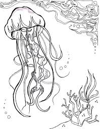 free coloring pages jellyfish ocean coloring page deep sea coloring pages jellyfish ocean ocean