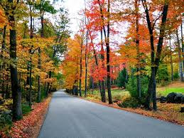 new fall foliage road trips travel channel