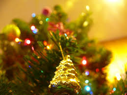 where to buy a christmas tree by neighborhood in san francisco