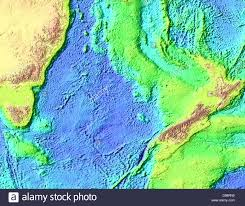 Relief Map Tasman Sea Floor And Land Relief Map Stock Photo Royalty Free