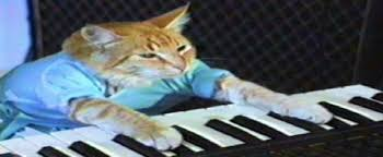what the hell happened to keyboard cat answers inside new