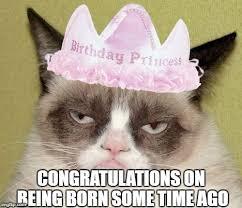 Princess Birthday Meme - grumpy cat birthday memes imgflip