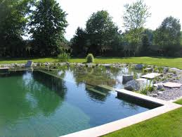 traditional swimming pool idea with natural feel natural