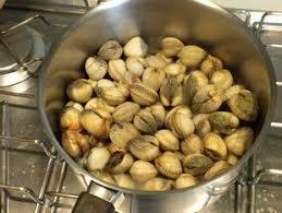 comment cuisiner des coques cuisine facile com comment préparer des coques