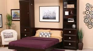 Twin Bunk Murphy Bed Kit Bed Intriguing Twin Murphy Bed Diy Ideal Modern Twin Murphy Bed
