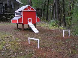 Precision Old Red Barn Chicken Coop Jbodong Easy To Old Red Barn Chicken Coop Plans