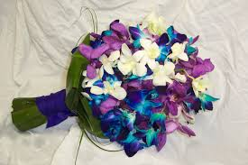 blue and purple orchids blue orchids flowers for weddings style by modernstork