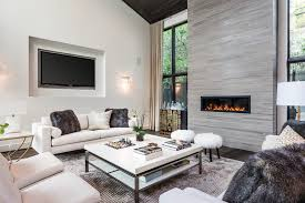 High Windows Decor Faux Fur Decorating Ideas Living Room Transitional With High