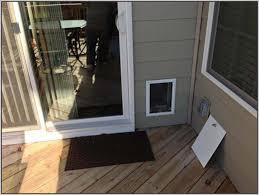 Glass Door With Dog Door Built In by Large Dog Door Sliding Glass Btca Info Examples Doors Designs