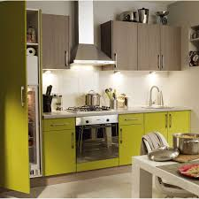 cuisine vert anis enchanteur peinture cuisine vert anis et cuisine vert galerie photo