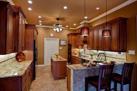 Kitchen Ceiling Lights Ideas Traditional Kitchen With Flat Panel Cabinets U0026 Kitchen Peninsula