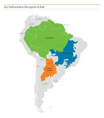 Amazon Rainforest Map Soybeans Union Of Concerned Scientists
