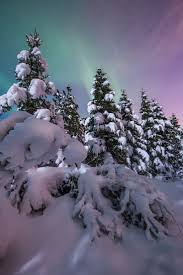 Snow Rock Covent Garden by 1049 Best Beautiful Snow Winter Images On Pinterest Winter