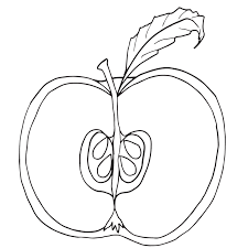 parts of an apple clipart