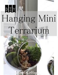 hanging terrarium hometocottage hanging terrarium terraria and