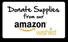 www wish list donations denton county friends of the family