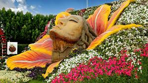 pictures of a garden dubai miracle garden world s largest flower garden cnn travel
