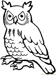 free printable owl coloring pages for kids with coloring pages